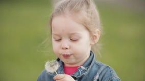 Powabnej ma?ej dziewczynki podmuchowy dandelion podczas gdy chodz?cy zbiory wideo