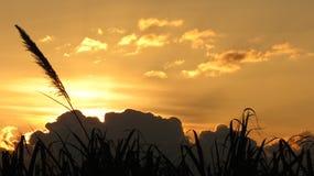 powabny dzień puszek daje iść nad morza widoku słońcem Obrazy Royalty Free