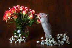 Powabny szczur na swój tylnych nogach obwąchuje kwiaty brązowy linii abstrakcyjne tła zdjęcie fotografia royalty free