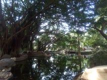 Powai del jardín de Hirandani foto de archivo libre de regalías