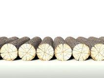 Powalać drzewny copyspace fiszorki tło, i ilustracja wektor
