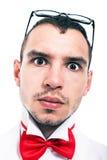 Poważna lab fajtłapy twarz Obrazy Royalty Free