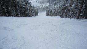 Powder Day in Utah Royalty Free Stock Image