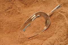 Powder of the pepper plant root used to produce a Kava drink Stock Image