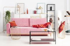 Powder pink couch with red pillow and blanket in apartment full of art and shelves. Real photo stock images