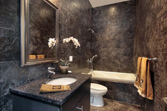Powder room with black granite walls Royalty Free Stock Photos