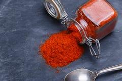 Powder seasoning spice paprika on a black stone Royalty Free Stock Image