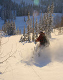 Powder skiing. Having another deep powder day in utah's backcountry Royalty Free Stock Photography