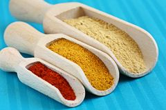 Powder spices Royalty Free Stock Image