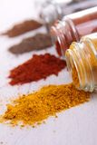 Powder spices Royalty Free Stock Photos