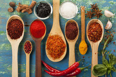 Powder spices on spoons Stock Photos