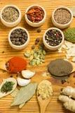 Powder spices stock photos