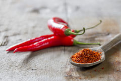 Powdered chilli on spoon Stock Photos