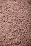 Powdered chocolate Stock Photography