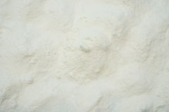 Powdered milk Stock Image