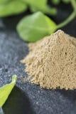 Powdered Sage Stock Photo