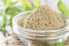 Powdered Sage Royalty Free Stock Photography