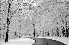 Powdered Snow. Fresh powdered snow in rural Indiana Royalty Free Stock Image