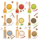 Powdered Spices Bowl And Corresponding Spoon Set Stock Image
