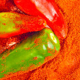 Powdered spices and red and green peppers Royalty Free Stock Photos