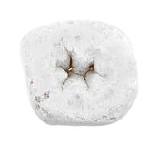 Powdered sugar donut Royalty Free Stock Images