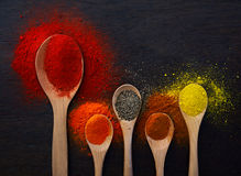 Powders and Ground Spices Royalty Free Stock Photo