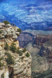 Powell Point, Grand Canyon, South Rim Royalty Free Stock Photography