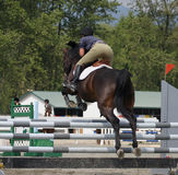 Power. Horse and rider clear jump in local competition royalty free stock photo