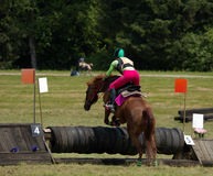 Power. Horse and rider taking jump in local competiton Royalty Free Stock Photos