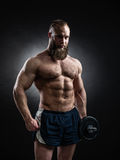 Power athletic bearded man in training pumping up muscles with d. Strong bodybuilder with six pack, perfect abs, shoulders, biceps, triceps and chest. Power Royalty Free Stock Photos