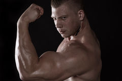 Power biceps Royalty Free Stock Images