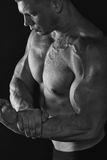 Power on biceps Royalty Free Stock Image
