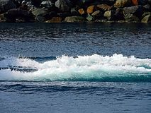 Wake and water wash from a power boat. Power boat wake from motor background no boat royalty free stock image