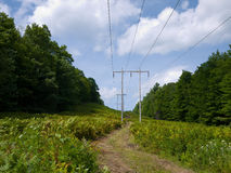 Power Distribution. Power lines cut across the country side in this wooded mountainous area of Vermont stock photography
