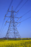 Power Distribution Lines - England Stock Image