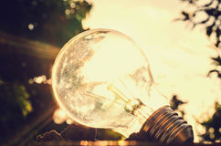 Power energy in nature and light bulb with sunset concept elect Royalty Free Stock Photography
