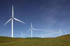 Power Generating Windmills. Stark white power generating wind turbines behind flowered green pasture and blue skies royalty free stock image