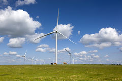 Power Generating Windmills Stock Image