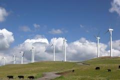 Power Generating Windmills stock photos