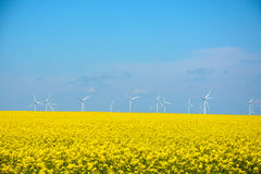 Power generating Windmills on summer landscape Royalty Free Stock Images