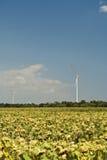 Power generators stock image