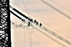 Power grid construction. The silhouette of perimeter electrician close-up Royalty Free Stock Photography