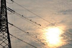 Power grid construction Stock Photo