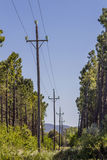 Power grid poles Royalty Free Stock Images