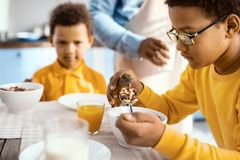 Cute pre-teen boy feeding his toy dinosaur with cereals. Power of imagination. Pleasant pre-teen boy holding a spoonful of cereals and feeding them to his toy Royalty Free Stock Photos
