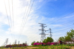 Power installations under the blue sky and white clouds. Power facilities in Tianjin Binhai New Area Dagang wetland park Stock Photography