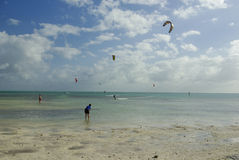 Power kiting beach. People power kiting on sandy beach, by the blue ocean, Florida Stock Images