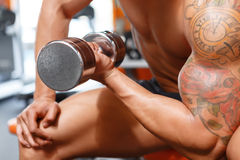 Power lifter working out with dumbbells in gym Stock Photos