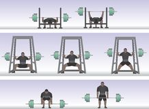 Power Lifting. Illustration of the 3 competitive power lifting events - Bench Press, Squat and Dead Lift Royalty Free Stock Photos