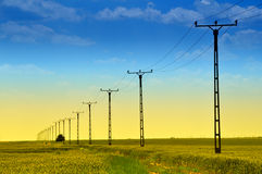 Power line. Across the fresh green meadows Royalty Free Stock Images
